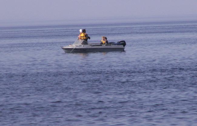 После подхода этого катера близко к скоплению белухи покинули место своего постоянного общения