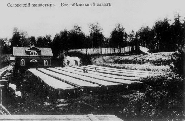 Воскобелильный завод, 1911 г
