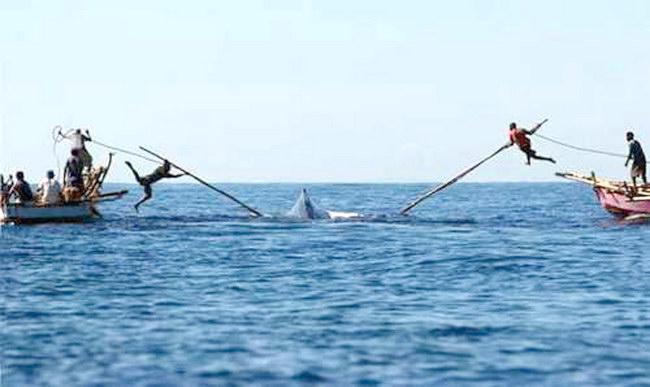 Убиван кита