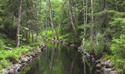 Картинки по запросу малый круг озерной- канальной системы